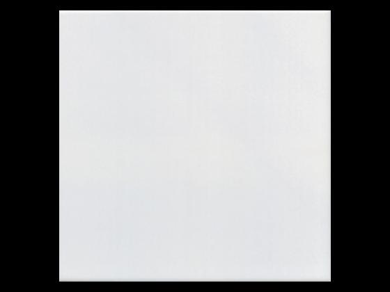 Бял Фаянс 20х20 гланц