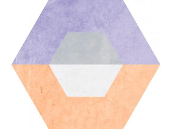 Florida Spectrum Hexagonal 25x22   hikovi bg