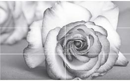 Декор Виола Роза Антрацит