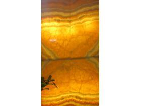 Orange оникс